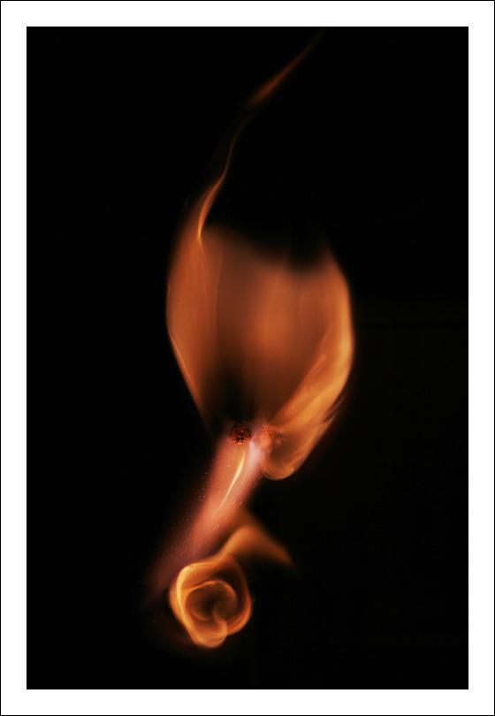 http://dspirit.free.fr/flammes.jpg